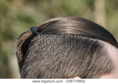 Male Haircut Pigtail, Close-up On A Nature Background. Photo Of Nape Without Face