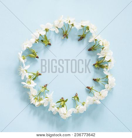 Spring Blossom In A Circle On Blue Background
