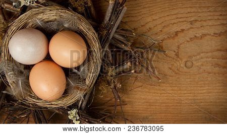 Brown Eggs In A Nest With A Wood Background, Room For Copy Space