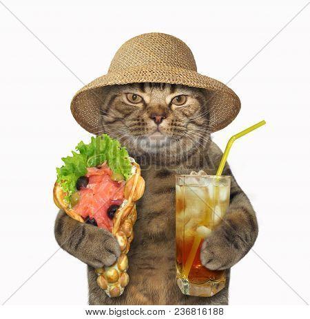 The Cat In A Straw Hat Holds A Glass Of Cold Tea And The Smoked Salmon With Bubble Waffles. White Ba