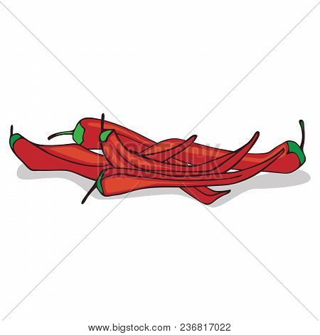 Isolate Ripe Red Hot Chili Pepper On White Background. Close Up Clipart With Shadow In Flat Realisti