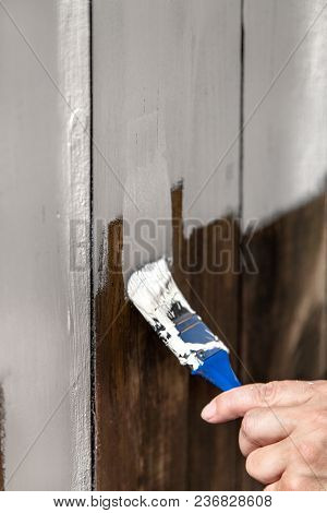 Man Is Painting And Chalking A Wooden Fence, Closeup With A Paintbrush And Hand