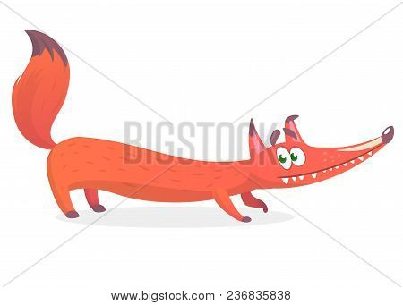 Crouching Fox On White Background Vector Illustration