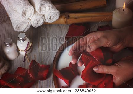 Female Hands With Rose Petals During Spa Treatments For Skin.