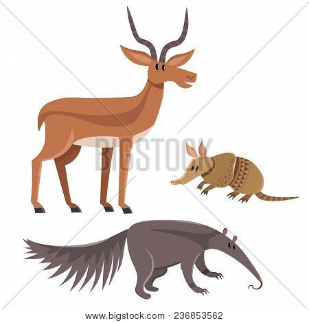 Set Of Wild Animals In Cartoon Style, Vector Illustration Of Armadillo, Antelope And Anteater Isolat