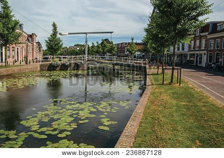 Weesp, Northern Netherlands - June 23, 2017. Tree-lined Canal With Aquatic Plants, Brick Houses And