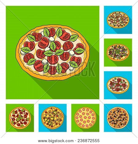 Different Pizza Flat Icons In Set Collection For Design.pizza Food Vector Symbol Stock  Illustration