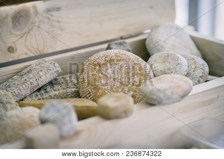 Different Grades Of Delicious Delicacy Aged Cheese With Mold In Wooden Box. Gastronomic Dainty Dairy
