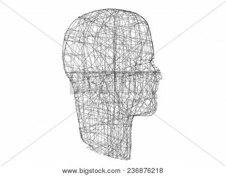 Human Head. Wireframe Model With Connection Lines On White, 3d Illustration