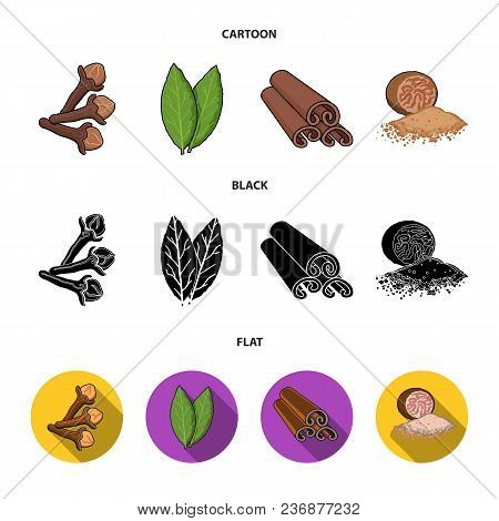 Clove, Bay Leaf, Nutmeg, Cinnamon.herbs And Spices Set Collection Icons In Cartoon, Black, Flat Styl