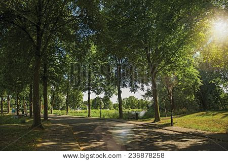 Street In The Shade Of Leafy Trees Near Canal With Blue Sky And Sunset Light At Weesp. Quiet And Ple