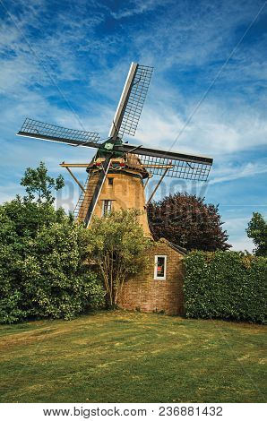 Wooden Windmill, Leafy Bushes And Green Lawn Under Sunny Blue Sky At Weesp. Quiet And Pleasant Villa