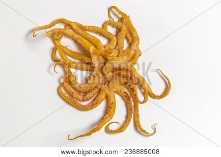 Dried Smoked Octopus Lie On White Background