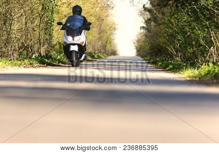 A Man Enjoys Driving A Motorcycle Scooter Through A Forest Landscape