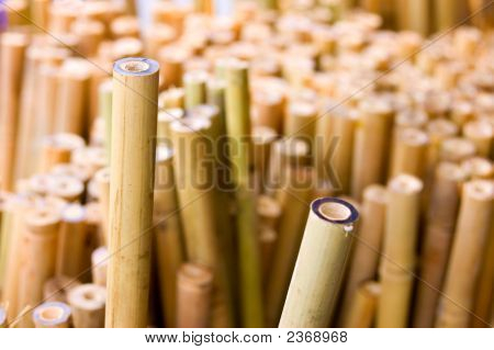 Bamboo Sticks Horizontal