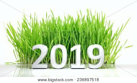 New year 2019 Number and green grass isolated on white background. 3d illustration