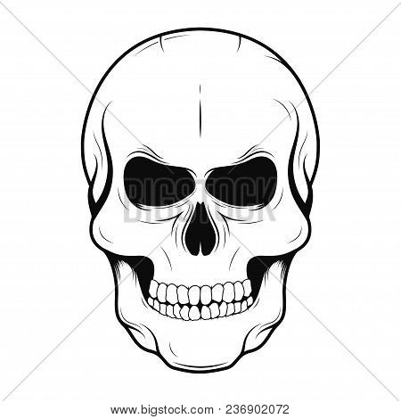 Vector Skull In Monochrome And Vintage Tattoo Style. Black Human Skull Isolated On White Background.