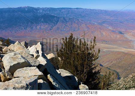 Rugged Rocky Terrain With Alpine Pine Trees Overlooking The Desert Taken From Mt San Jacinto Peak, C