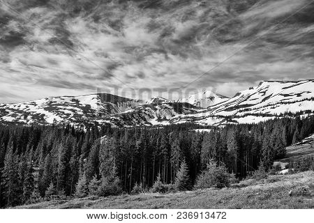 Spring Mountain Landscape With Snow And Fir Forest. Dramatic Clouds Lying On The Horizon And Sun Is