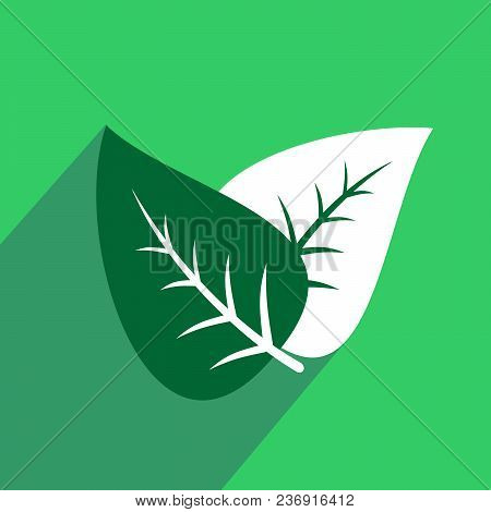 Leaf Flat Icon With Long Shadow. Vector Graphic Illustration.