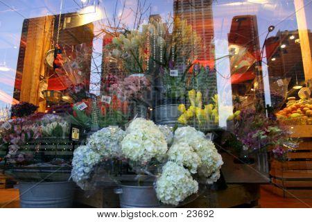Market Window