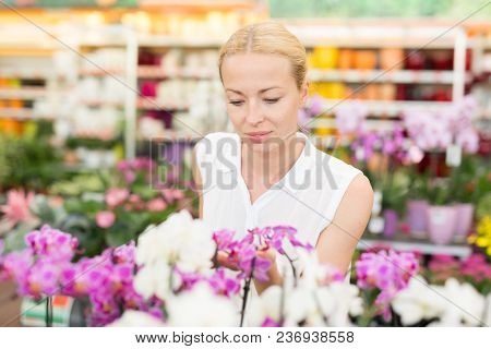 Beautiful Lady Smelling Colorful Blooming Orchids.