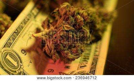 Medical Use Of Healing Marijuana Cbd Thc .