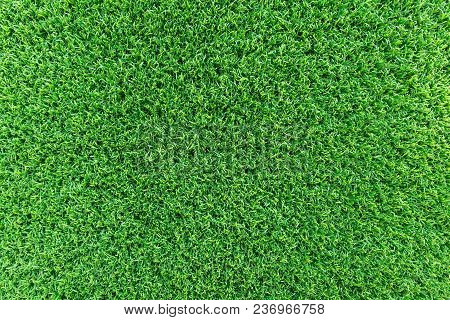 Artificial Grass. Grass Texture Or Grass Background. Green Grass For Golf Course, Soccer Field Or Sp