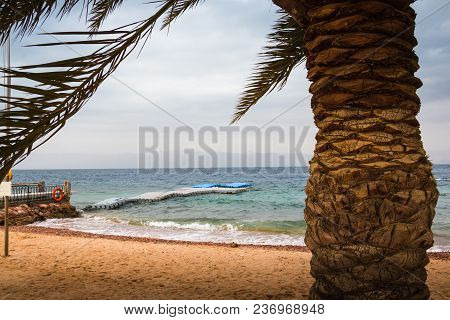 Beach, Palm, Sea And Pier In The Water On A Cloudy Summer Day In Jordan