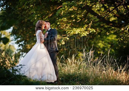 Newly Married Couple Enjoying Each Other's Company And Kissing In The Forest At Sunset On Their Wedd