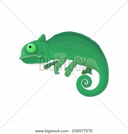 Chameleon Wild African Animal Vector Illustration Isolated On A White Background.