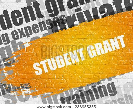 Business Education Concept: Student Grant On The White Brick Wall Background With Wordcloud Around I