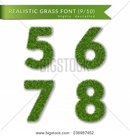 Grass Numbers 5 6 7 8. Green Numbers Five, Six, Seven, Eight Isolated On White Background. Green Gra