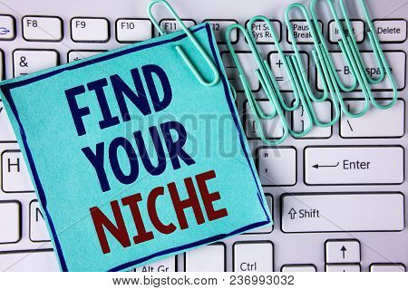 Word Writing Text Find Your Niche. Business Concept For Search For Your Field Decide Choice Educatio
