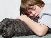 twelve year old boy asleep on standard poodle dog poster