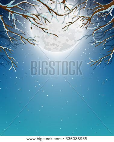 Winter Background With Tree Branch And Moonlight
