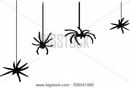 Spider Icon On White Background  Warning, Web, White, Wildlife