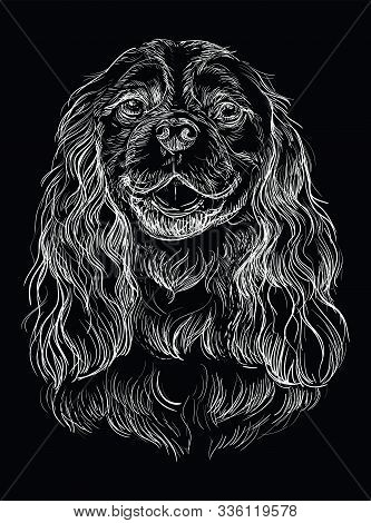 Cavalier King Charles Spaniel Vector Hand Drawing Illustration In White Color Isolated On Black Back