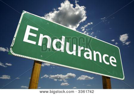 Endurance Road Sign
