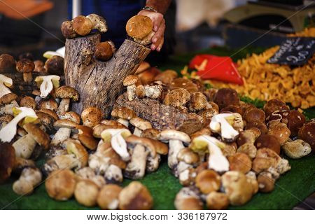 Fresh Forest Wild Mushrooms On The Market On The Old Fashioned Sunday Provencal Market In Aix-en-pro