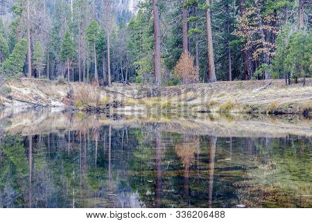 Merced River Reflections In Yosemite Valley At Autumn. Yosemite National Park, California, Usa.