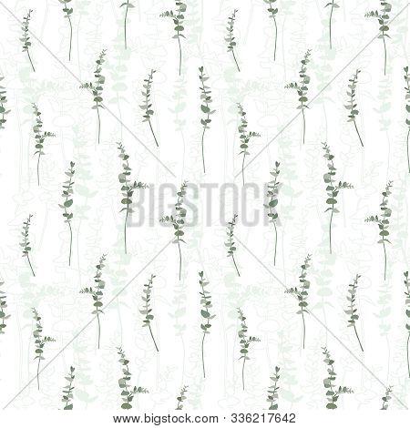 Eucalyptus Leaf Seamless Pattern. Design Background. Vector Illustration Eucalyptus Leaves