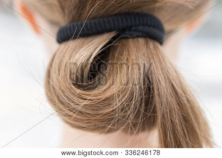 Close Up Of Blonde Fair Casual Hair Bun In Pony Tail, Macro