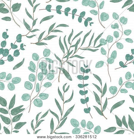 Eucalyptus Leaves Colorful Seamless Pattern. Foliage, Green Floral Texture. Hand Drawn Plant Branche