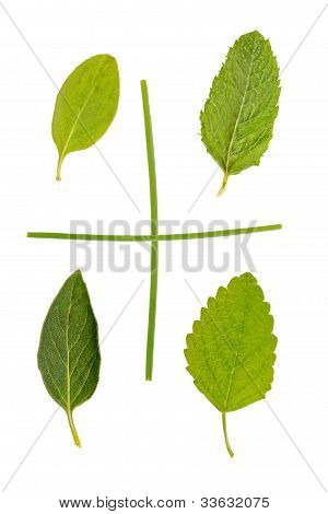 five herbs