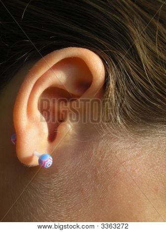 Pierced Ear With Ptfe Barbell