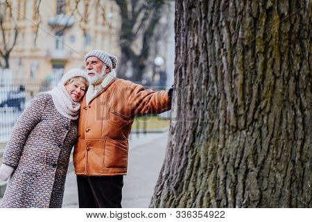 Old Couple, An Elderly Man And A Woman In A City Street. Active Pensioners Leaning On Big Old Tree H