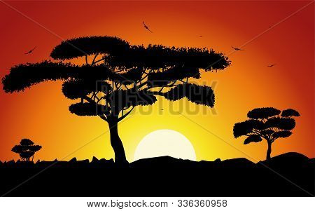 Sunset Or Sunrise In Africa With The Silhouettes Of Trees, Grass, Flying Birds, National Home And Na