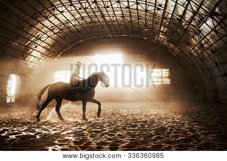 Majestic Image Of Horse Horse Silhouette With Rider On Sunset Background. The Girl Jockey On The Bac