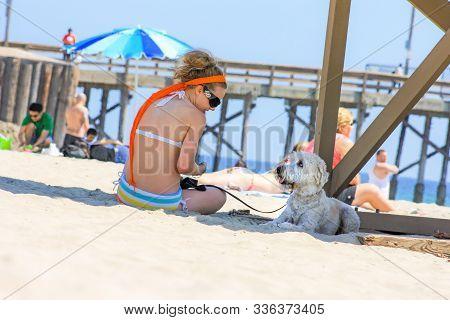 Dog Looks At Beach Bum Buddy California United States May 21 2009